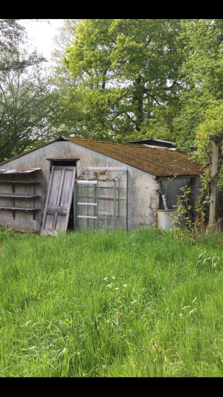 Before Asbestos Shed Removal Job in Surrey