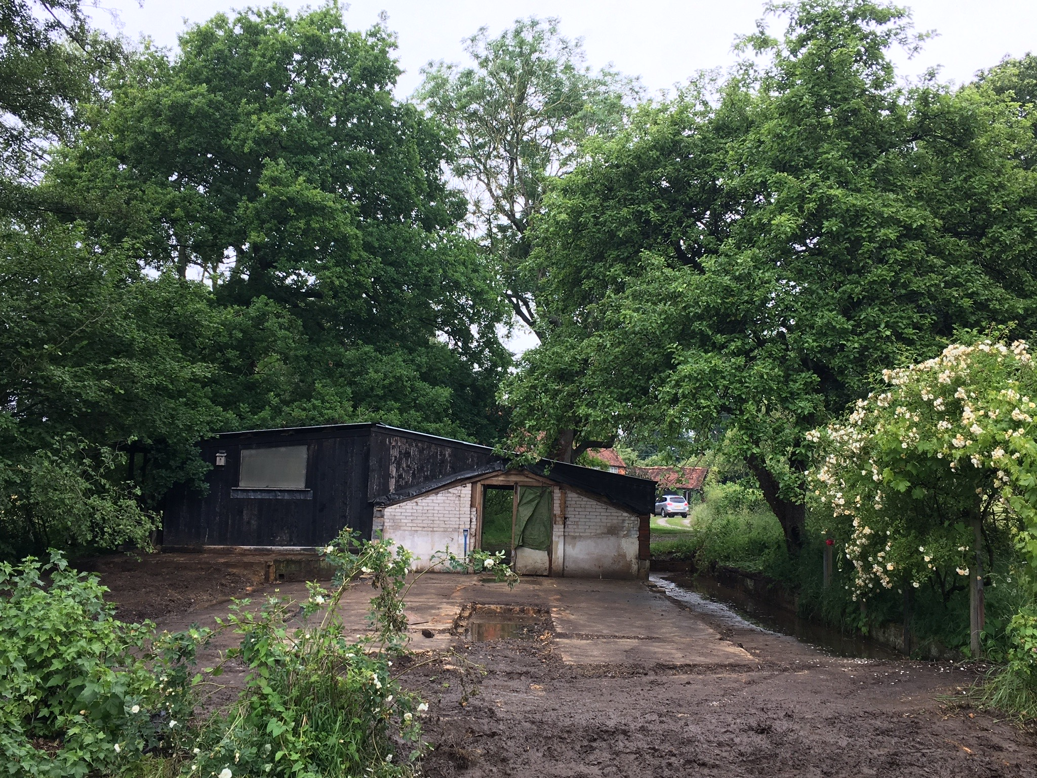 After Asbestos Shed Removal Job in Surrey